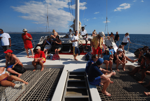 CatamaranAdventureCocoFlamingodaytour