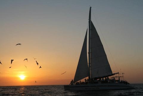 CatamaranAdventureCocoFlamingosunset