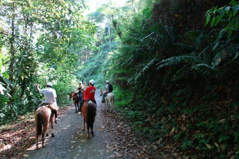 CostaRicahorseback_riding_manuel_antonio