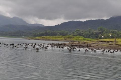 Kayak-on-Arenal-Lake