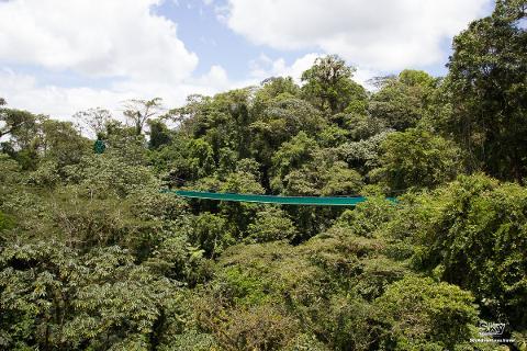 Sky-Walk-Monteverde-CostaRica