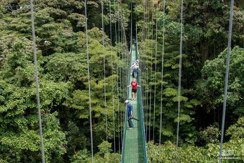 Sky-Walk-Monteverde-Hanging-brige