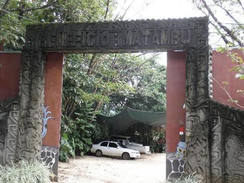 cafe-diria-coffee-plantation