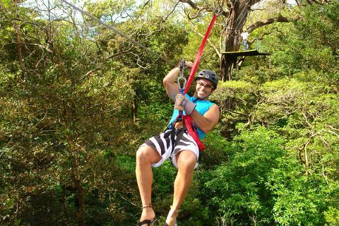canopy_Guanacaste