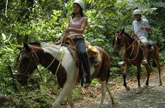 manuel-ant-horseback-riding-tour-manuel-antonio-national-park-costa-rica