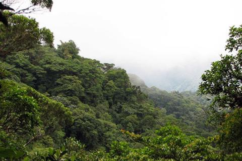 santa-elena-reserve-look-point_med