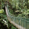 arenal tour Hanging Bridges